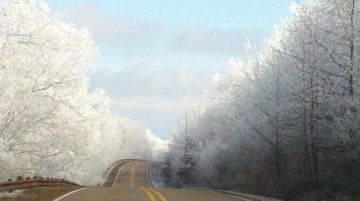 Even in the dead of winter, it looks like a wonderland.