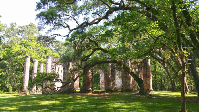 old-sheldon-church-directional-trees