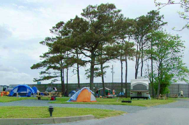Delaware State Park Beach Camping
