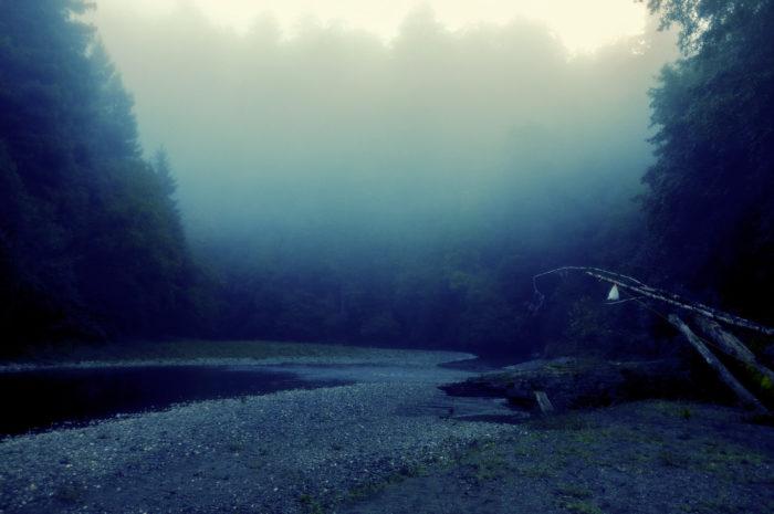 5. A magical, misty sunrise.