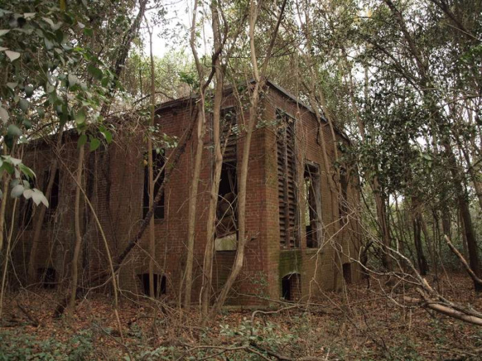 5. An empty school decays along the banks of the Congaree River.