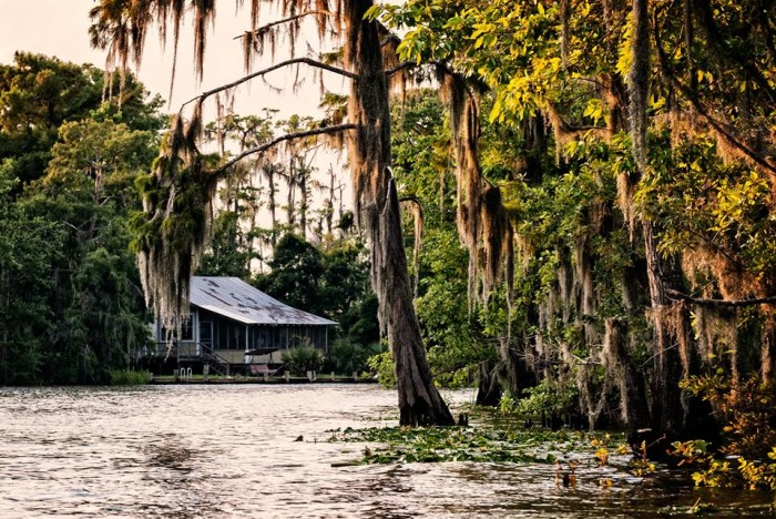 4. Golden afternoon on the Tangipahoa River