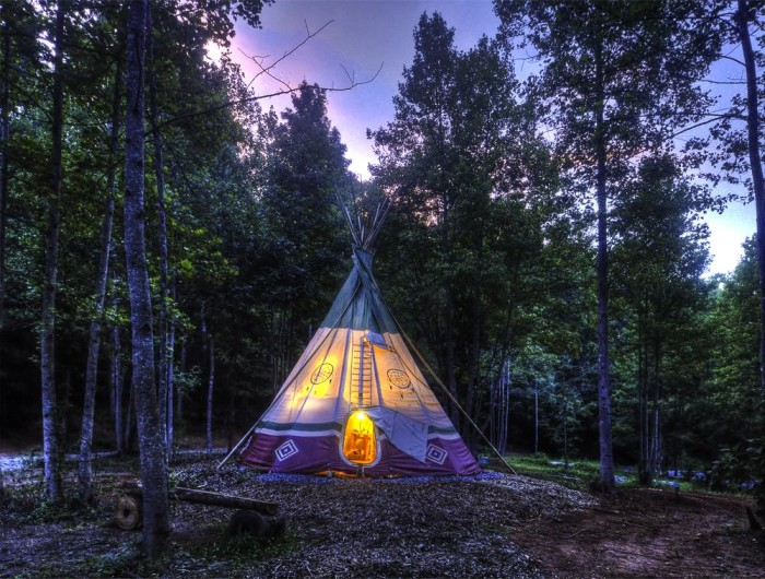 6. North Georgia Canopy Tours—5290 Harris Rd, Lula, GA 30554