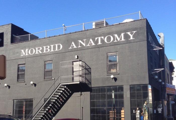 3. Morbid Anatomy Museum, Gowanus