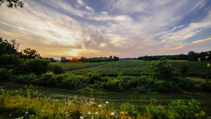13. Wine Country that will surely quench your thirst.