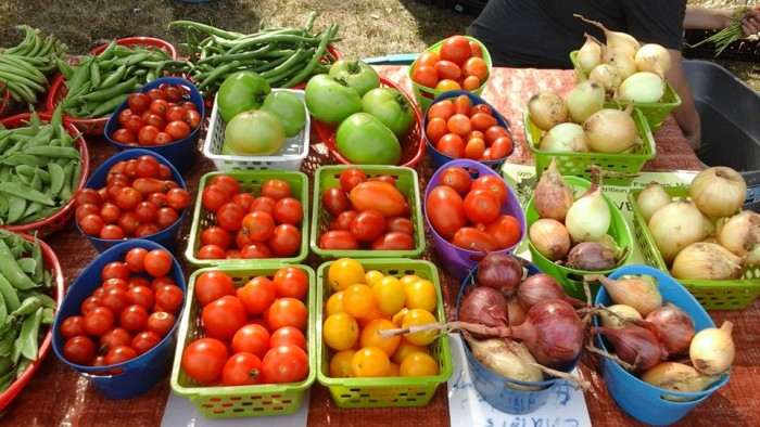 8. Sparta Wisconsin Farmers Market
