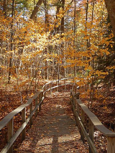 1. Rachel Carson Trail