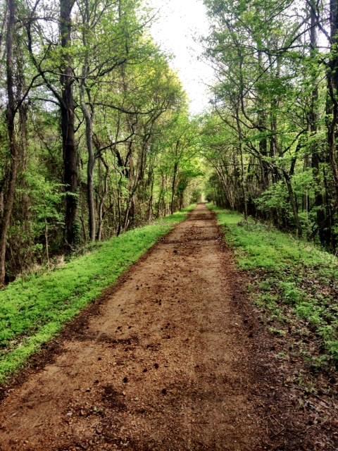10. Thacker Mountain Trail, Oxford