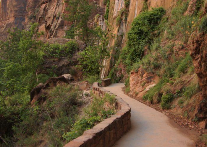 1. Explore the Riverside Walk at Zion National Park.