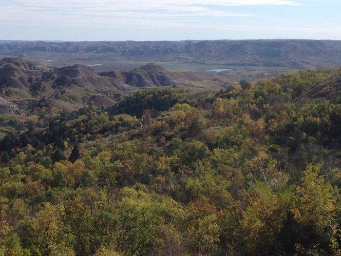 4. Little Missouri State Park Trails