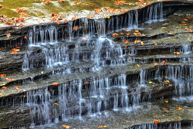 Explore the peaceful waterfall at Clifty Falls or just walk around the trails that curve throughout this gorgeous park.