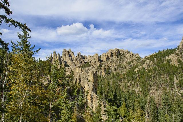 5. The Black Hills