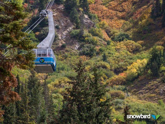 4. Ride the tram at Snowbird this summer.