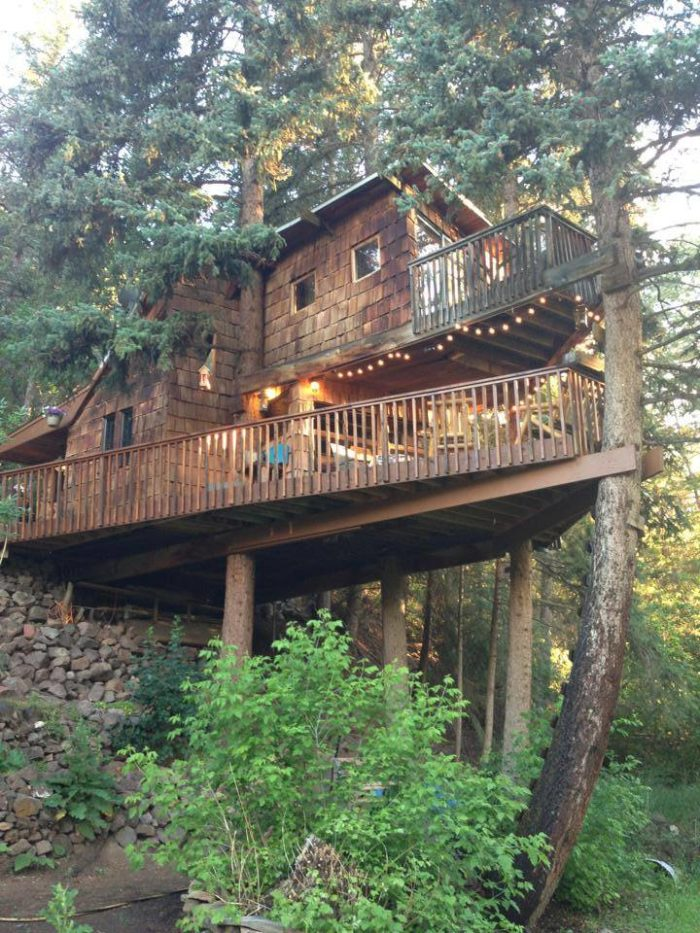 Built in 1971, this spacious and elaborate treehouse is built around four large spruce trees and stands more than 25 feet tall.