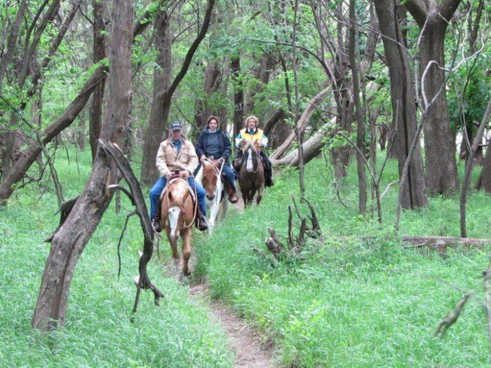 12. Pawnee Prairie Horse & Nature Park (Wichita)