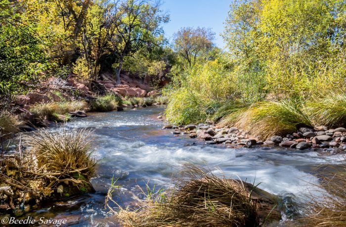 7. Dipping your toes—or your whole body—into one of Arizona's many rivers.