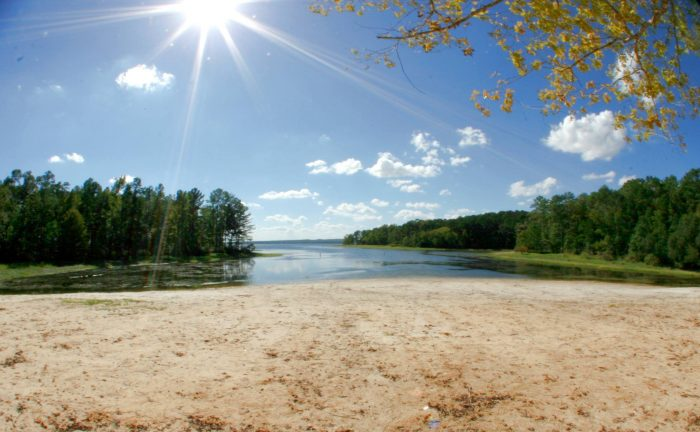 3) South Toledo Bend State Park, Anacoco