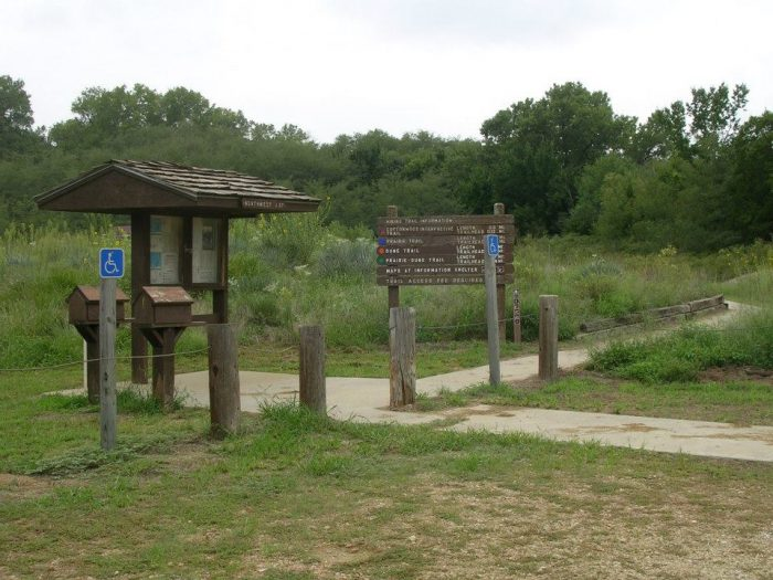 1. Cottonwood Trail at Sand Hills State Park (Hutchinson)