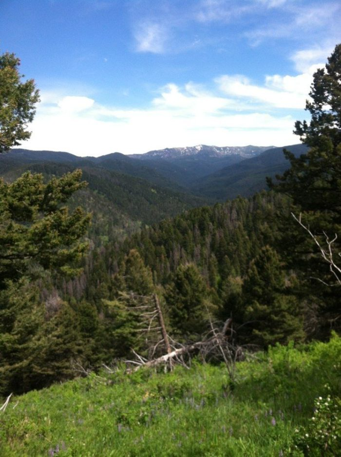 12. Leverich Canyon Trail, Bozeman