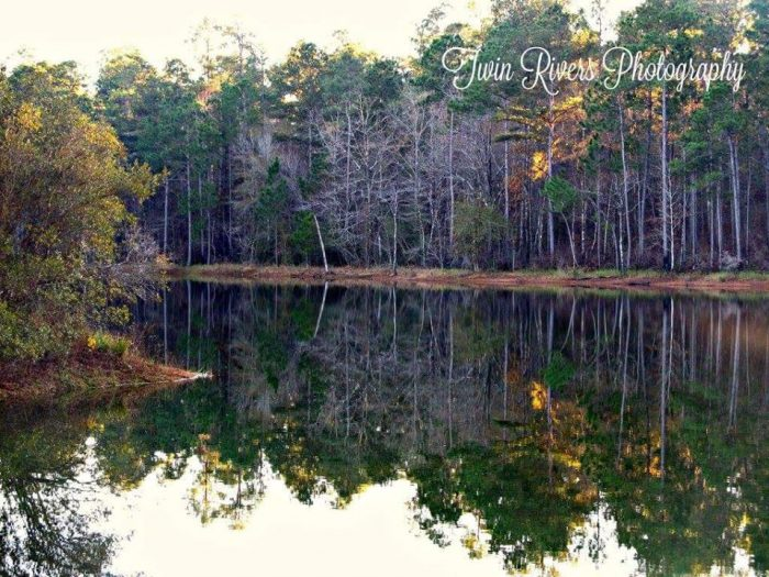 11. Blue Pond, Perry County