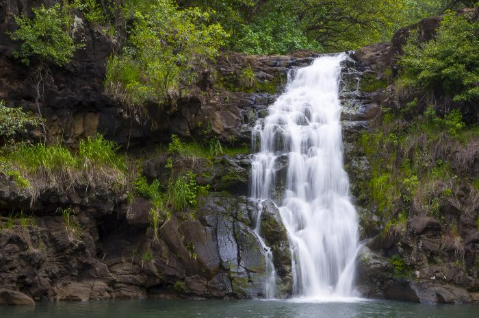 11. A calm waterfall, and serene gardens will welcome you to Waimea Valley.