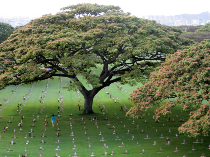 11. National Memorial Cemetery of the Pacific