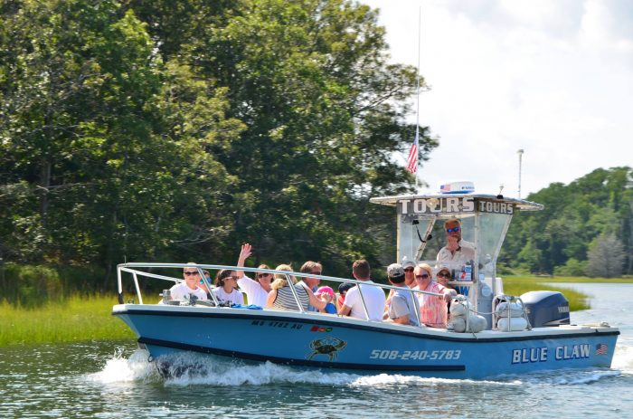 8. Take a seal-watching and beach-combing cruise with Blue Claw Boat Tours.