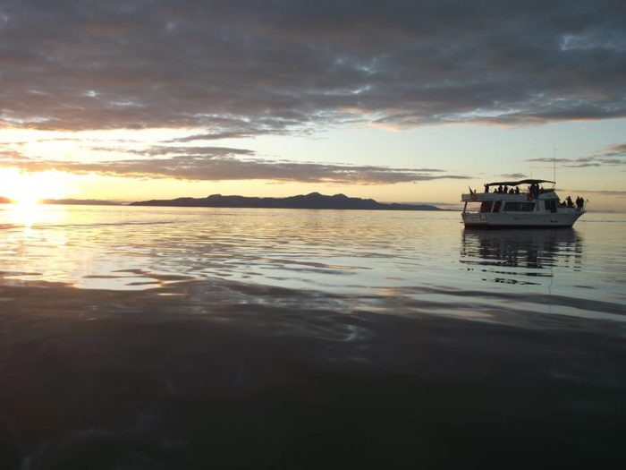 3. Gonzo Dinner Cruises, Great Salt Lake