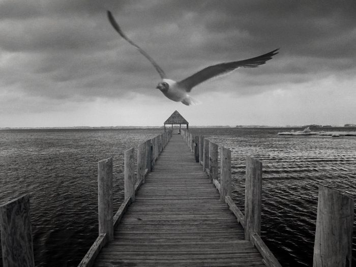 1. We have our serene spots, like this peaceful Maryland pier.