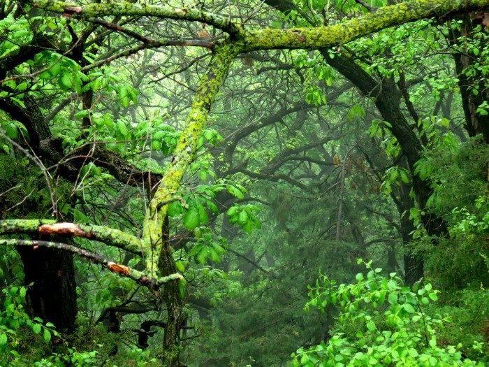 South Dakota: Good Earth State Park