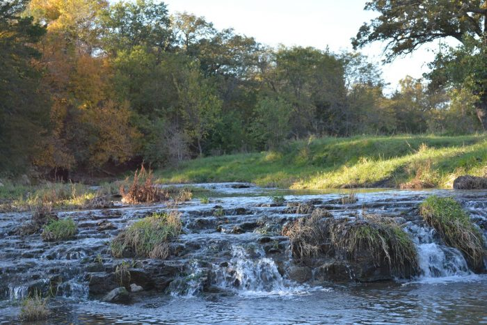 7. This creek in Cass County is so tranquil and relaxing.