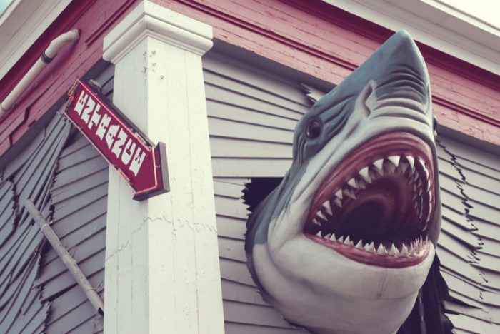 1. This ferocious looking fellow is located at Ripley's Believe It Or Not in Ocean City.