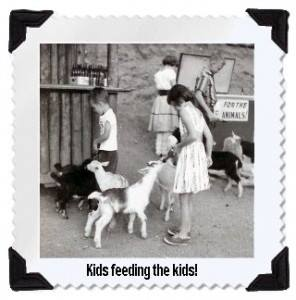 """""""#throwbackthursday to our old petting zoo in the 1950's!! White deer, goats, sheep, burros, ducks and peacocks roamed the park to the delight of young and old. Special food and bottled milk were available for guests to feed the animals."""""""