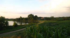 Visit These 7 Beautiful Farms In Minnesota For An Unforgettable Overnight Experience
