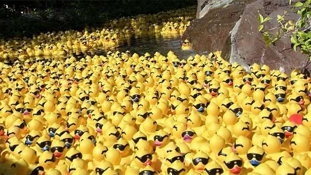 1. Las Vegas Lucky Duck Family Festival