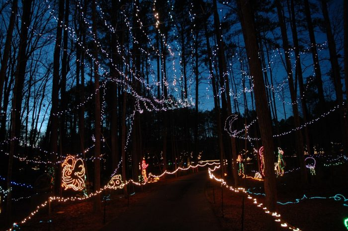 Or visit during the holiday season for their fun and quirky light show.