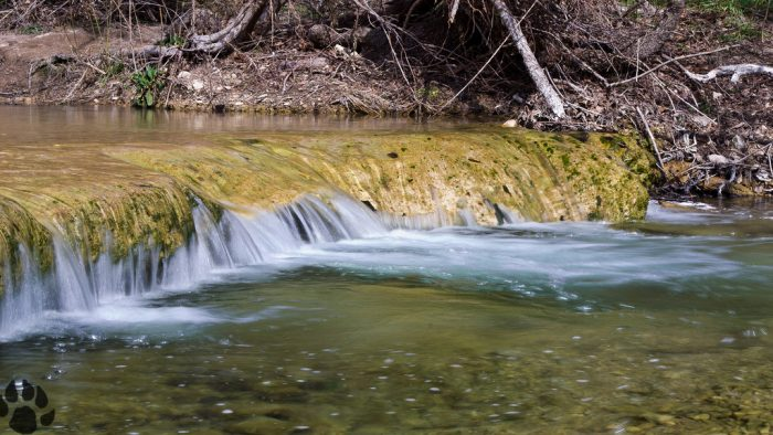 3. Waterfalls like this are fun to jump right into for a splash on River Place Nature Trail.