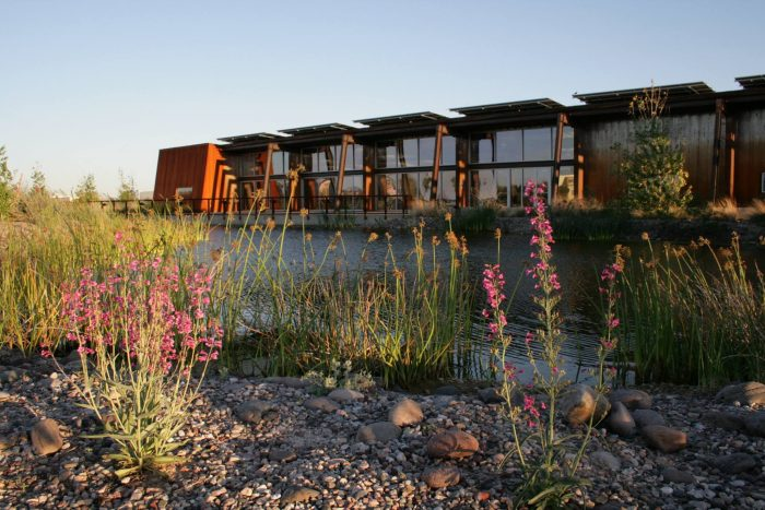 8. Visit a riparian preserve like the Nina Mason Pulliam Rio Salado Audubon Center in Phoenix.