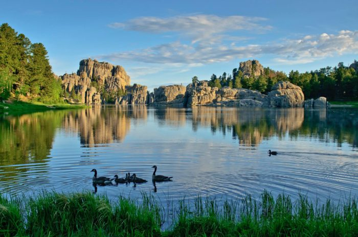 9. Is there anything more magical than a family of ducks swimming across Sylvan Lake?