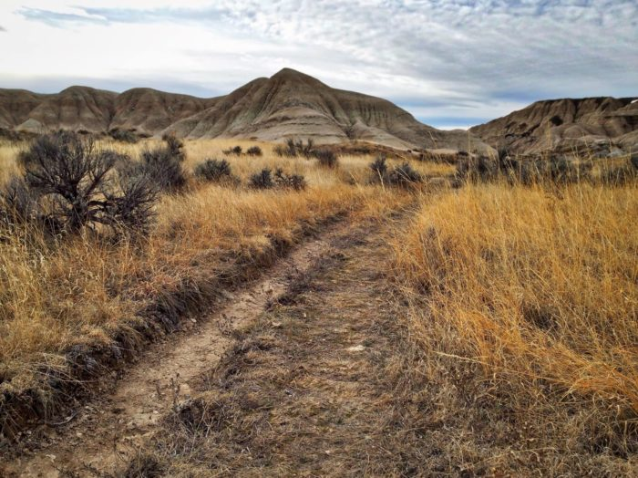 2. It doesn't get much more enchanting than Toadstool Geologic Park, near Harrison