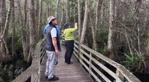 13 Epic Outdoorsy Things In Florida Anyone Can Do