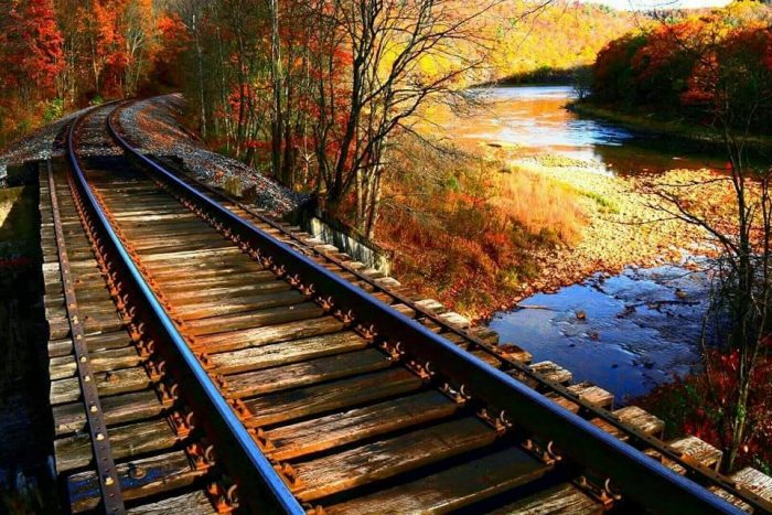 9. Railroad tracks in Frenchville are looking golden in this photograph by Travis Houston.