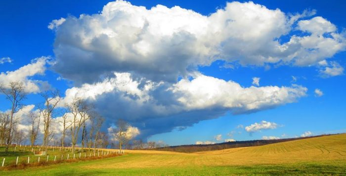 13. The fields in Blair County stretch for miles in this picture taken by Carolyn Brumbaugh.