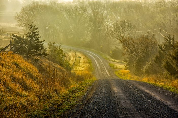 5. Where could this road possibly lead? I'm fairly certain it leads into a place from my dreams.