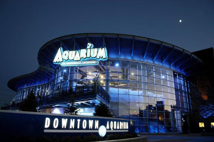 7. Downtown Aquarium