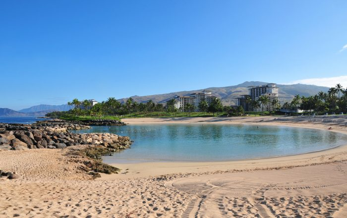 13. Swim with sea turtles at the Ko'olina Lagoons.
