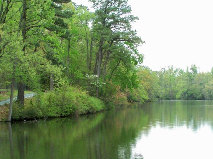 6. Lake Maury (Newport News)