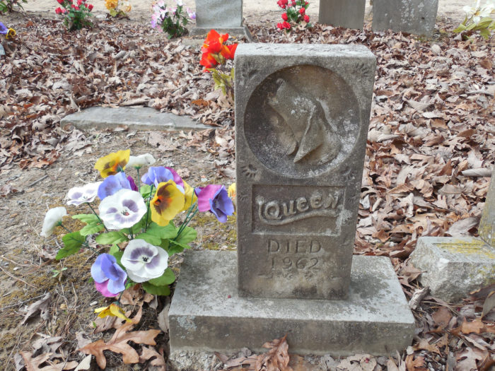 3. Colbert County is home to the Coon Dog Cemetery – the only cemetery of its kind in the world.