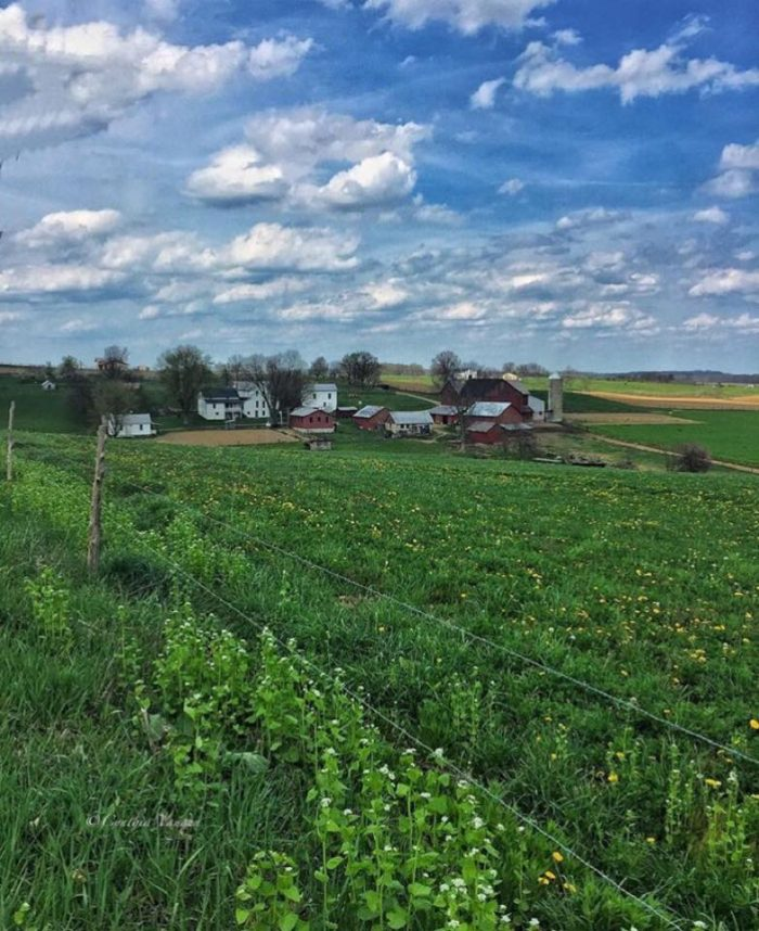 15. How beautiful does this farm scene in Wayne County look? What a gorgeous place to call home.