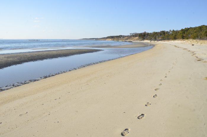 Virginia Beach  Wikipedia